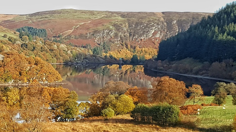 Events, Activities & Great Reasons to visit Mid Wales this Autumn